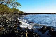 Ahihi Shoreline (heartinhawaii) Tags: ocean sunset sea nature hawaii coast seaside rocks pacific tide shoreline maui 808 lavarocks rockyshoreline ahihicove kiawe southmaui kiawetrees rocksandsea nikond3300 mauiinnovember ahihinaturereserve