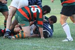 Orange 10's 2009