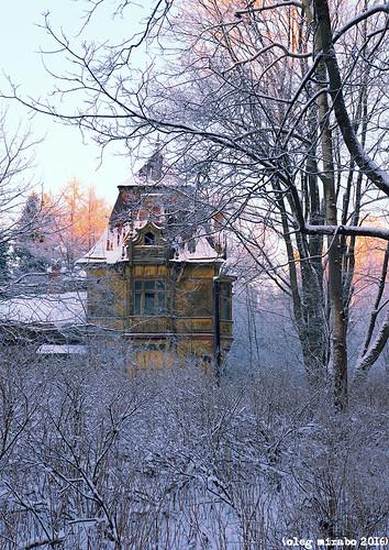 Yellow Сottage (рус. Желтая дача). Shuvalovsky Park