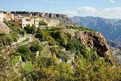 Life on the edge (david.gill12) Tags: cliff mountain village terraces oman