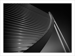 Pont de l'Assut de l'Or. Valencia (ximo rosell) Tags: blackandwhite bw abstract blancoynegro luz valencia architecture arquitectura nikon bn calatrava d750 pont abstracto ciudaddelasciencias llum contrallum tirantes ximorosell