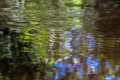 wtmv (roriog) Tags: water rio gua river movement