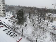 00722871 Schnee (golli43) Tags: schnee sunset sun streets rain sunrise mond heaven himmel wolken neighbours sonne katzen nachbarn homesweethome regen januar spaziergänge spaziergang streetlive segelflieger