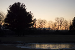 Setting Suns (ISAMLIU) Tags: trees winter sunset sun lake tree nature pond shadows natural lakes sunsets ponds suns