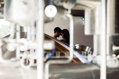 Brewery Love (nicksparksphotography) Tags: pictures wedding beer photography engagement colorado couple shoot photographer photos denver brewery session through