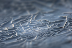 water's edge (Marc McDermott) Tags: winter ontario canada abstract macro texture ice nature water canon river rouge is crystals pattern crystal iii formation ii usm mondays extender 2x ef70200mm f28l 5dmarkiii