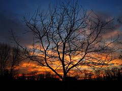 noce (eu_56) Tags: tramonti
