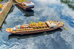 It's nearly the end of Tet 2016 (Black Baron93) Tags: flowers flower reflection canon landscape boat surface vietnam reflect end tet lunarnewyear waterreflection landscapephotography vitnam vietnamesetet canon600d canonkissx5 remainning