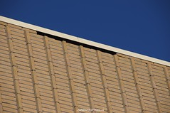 DSC01118 (ZANDVOORTfoto.nl) Tags: 28 dak maart 2016 schade ontruiming bakstenen kromboomsveld28316zandvoort ontruimingivmvallendebakstenenendaklekkage kromboomsveld