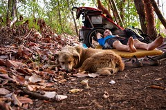 Man and his dog out on an adventure. #theworldwalk #travel #panama