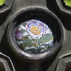Pansies, enamel image (Monceau) Tags: pansy pansies enamel gravemarker