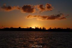 Sunset at Kralingse Plas (Mone-Photography) Tags: sunset lake water night evening zonsondergang rotterdam zon kralingen kralingseplas