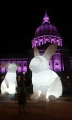 (sftrajan) Tags: sanfrancisco light rabbit bunnies luz night noche purple cityhall conejo rip prince inflatable lumiere nuit lapin artexhibit intrude calfornia 2016 sanfranciscocityhall princerogersnelson amandaparer