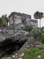 "Les ruines mayas de Tulum: la petite cenote <a style=""margin-left:10px; font-size:0.8em;"" href=""http://www.flickr.com/photos/127723101@N04/25987584161/"" target=""_blank"">@flickr</a>"