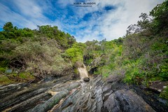 Tsitsikamma National Park (Chiara Salvadori) Tags: ocean africa travel winter sea wild green beach nature water colors landscape southafrica coast spring scenery outdoor indianocean falls cape traveling eastern gardenroute easterncape sudafrica tsitsikammanationalpark