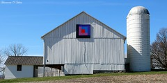 Keep on the sunny side (Shannon Rose O'Shea) Tags: barn canon colorful flickr quilt pennsylvania farm bluesky silo logcabin reedsville barnquilt t6i shannonroseoshea wwwflickrcomphotosshannonroseoshea canonrebelt6i canoneost6i canont6i canoneosrebelt6i shannonosheawildlifephotography rebelt6i shannonoshea stateroute655 juniatavalleyquiltersguild