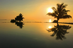 Lux Maldives, South Ari Atoll (ozdenugu) Tags: ocean sunset pool south palm maldives lux tropics ari atoll