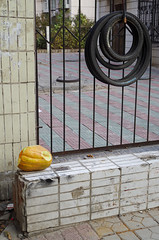 Abandoned_Squash_With_Bike_Tires_2015_ Melissa Donaghue-1827 (daisyvisionxxx) Tags: china november yellow wall asia pentax tires sidewalk squash hebei  ricoh peoplesrepublicofchina 2015  tangshan    hebeiprovince  tangshancity pentaxk50 melissadonaghue