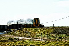 choo choo (arawnthompson) Tags: bridge train countryside transport publictransport choochoo arriva