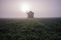 The barn (Simon_Bauer) Tags: morning sun mist tree simon nature field fog barn sunrise germany landscape bayern deutschland bavaria see am nikon mood nebel wiese bauer landschaft sonnenaufgang baum stimmung kochelsee kochel scheune nebelstimmung grosweil