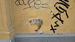Kiwi (ezbai) Tags: brussels white streetart black muro art yellow wall graffiti stencil arte bruxelles bruselas graff kiwi mur stencilart pochoir plantilla arteurbano arturbain apteryx