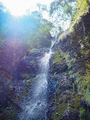 PhoTones Works #7770 (TAKUMA KIMURA) Tags: nature water japan landscape waterfall spring scenery olympus    okayama kimura      penf takuma   photones