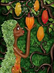 color chocolate (planeta urazan) Tags: afro cocoa afrikan cacao chocolatecolor colorchocolate colombianchocolate quierecacao chocolatecolombiano