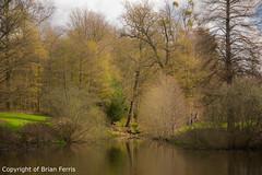 IMGP1097 (acornuser) Tags: park trees blackandwhite bw reflection water woodland garden landscape waterfall spring surrey cascade virginiawater blosom sigma1770 pentaxk3