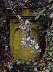- (txmx 2) Tags: friedhof cemetery graveyard tombstone hamburg altona ottensen klopstockkirche whitetagsspamtags whitetagsrobottags evangelischlutherischechristianskirche