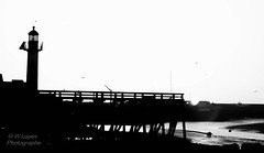 Trouville sur mer (wpldjesus) Tags: bw france frana farol bassenormandie trouvillesurmer