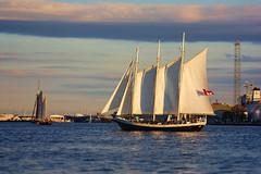 3 Masted Schooner, Moonfleet (Tim Pohlhaus) Tags: city river point harbor maryland baltimore fells schooner patapsco moonfleet saiboat gcbsr
