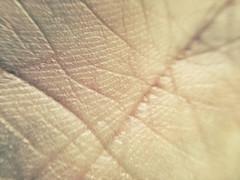 FullSizeRender (40) (sswartz) Tags: abstract macro closeup flesh skin wrinkles