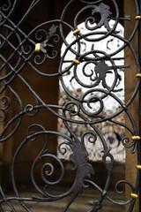 Johannes-Nepomuk-Brunnen Rastatt (marc.fray) Tags: germany deutschland brunnen grille baden fontaine allemagne marktplatz gitter badenwrttemberg puits rastatt tiefbrunnen paysdebade johannesnepomukbrunnen