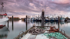 There is no right path. Only one that allows you to sleep soundly and wake up excited ' Jennifer Louden (Images by Ann Clarke) Tags: panorama marina reflections boats jetty poles ropes fleet portlincoln april2016