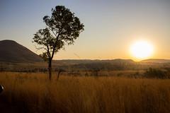 african atmosphere (felipeepu) Tags: africa sunset south safari südafrika steppe