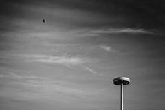 dreaming black and white (o_teuerle) Tags: sky urban bw clouds blackwhite dream himmel wolken dreaming stadt sw monochrom minimalism traum trumen minimalismus