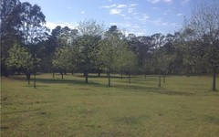 Lot 221 Old Maitland Road, Sawyers Gully NSW