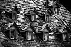 wooden rooftop in B&W (Frank ) Tags: wood roof blackandwhite switzerland wooden europe chur 500faves woodenroof topf500 100faves 200faves 300faves 400faves woodenrooftop