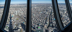 IMGP7202-Pano.jpg (PenTex) Tags: shadow japan skyscraper tokyo viewpoint highup observationpoint communicationtower urbanscene tokyoskytree