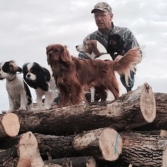 "Ron and his dogs. • <a style=""font-size:0.8em;"" href=""http://www.flickr.com/photos/72564046@N04/24216178214/"" target=""_blank"">View on Flickr</a>"