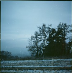 (bensn) Tags: trees snow film field japan zeiss evening kodak hasselblad carl 100 nagano f28 80mm 500cm ektar