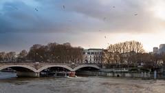 Seine (-Adrien) Tags: paris france seine parizo