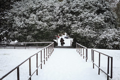 20160122-012.jpg (sara.bee) Tags: snow wm williammary swemlibrary wminwinter