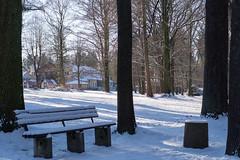 Not to sit (puste66blume) Tags: bench bank stadtpark hbm alpha58 inesbilder puste66blume