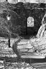 Arches in the Park - Central Park New York USA R-Tuffin (rtmotorphotos) Tags: bw usa newyork america canon mono blackwhite centralpark manhattan parks sigma arches paths 18250 canon7d rtuffin