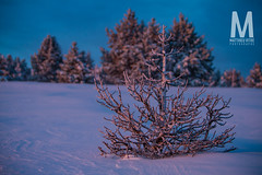 Matthieu Vitre-MtVentoux-4 (photomontagne) Tags: landscape hiver neige coucherdesoleil vaucluse ventoux montventoux