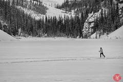 Scenes from Lake Louise 3 (Kasia Sokulska (KasiaBasic)) Tags: travel winter people lake snow canada mountains rockies frozen tourists alberta lakelouise banffnationalpark