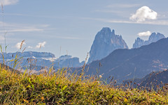 Punti di Vista (***lorenza***) Tags: mountains green nature valgardena laion landscapephotography sassolungo trentinoaltoadige photographyflickr southtyrolitaly sanpietrodilaion thecomuneoflajeninsouthtyrol