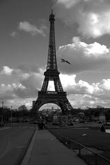 IMG_6552 (Nut's) Tags: paris love canon tour sigma toureiffel amoureux effeil eosm