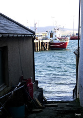 A Ship Glimpsed From A Stromness Lane (orquil) Tags: uk greatbritain winter sea sunshine islands scotland pier seaside interesting alley orkney ship waterfront harbour shoreline sunny calm lane attractive ripples february passage stern narrow clutter stromness eyecatching alongside berthed glimpsed orcades islandsenior